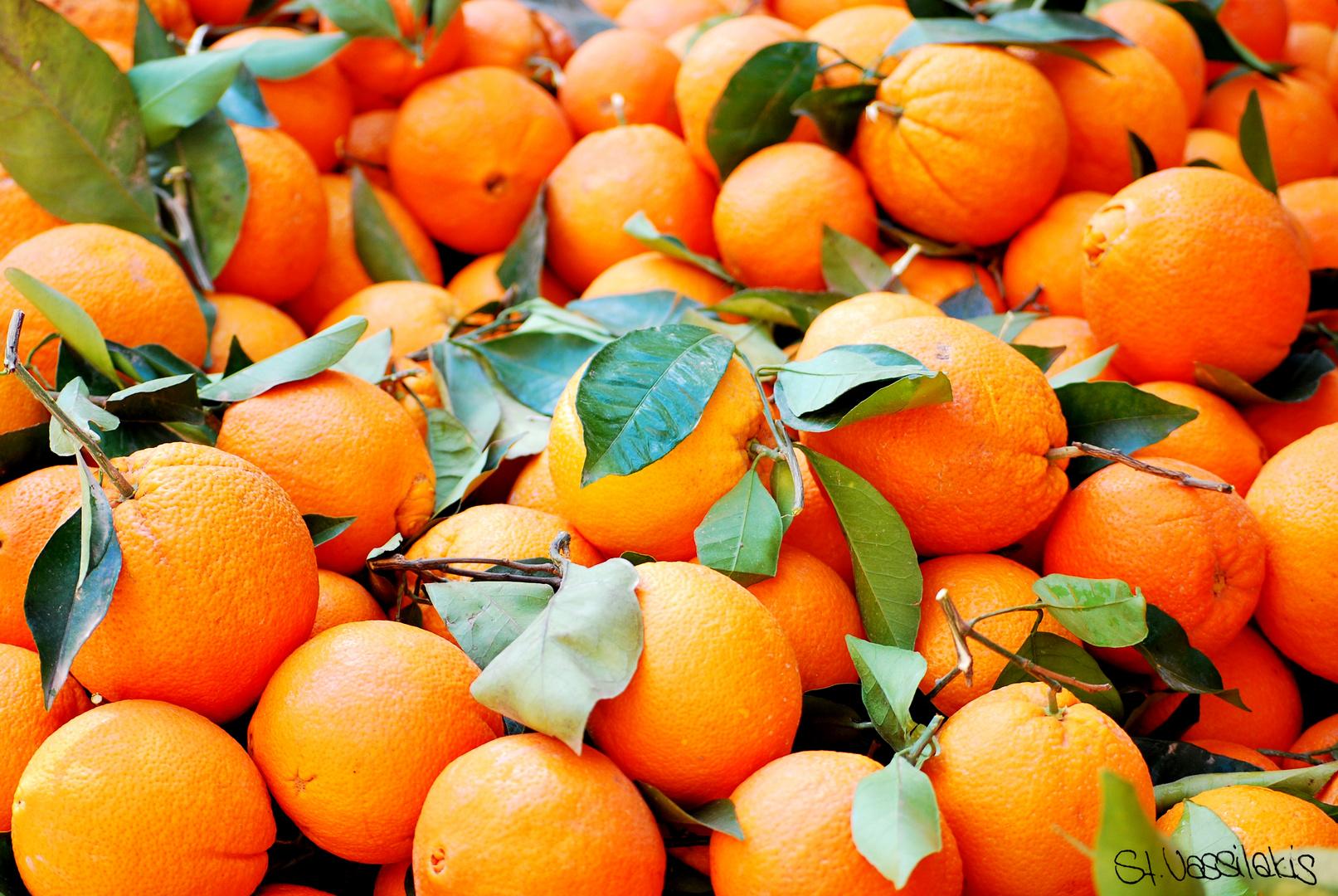Orangen (Ja, alles war frisch auf dem Markt)