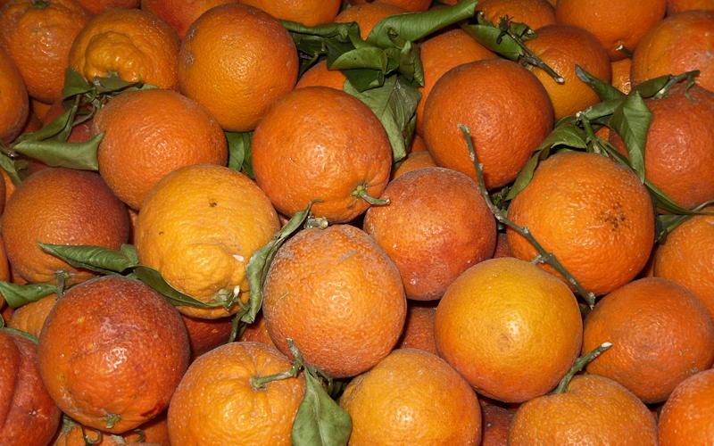 Orangen ohne Ende
