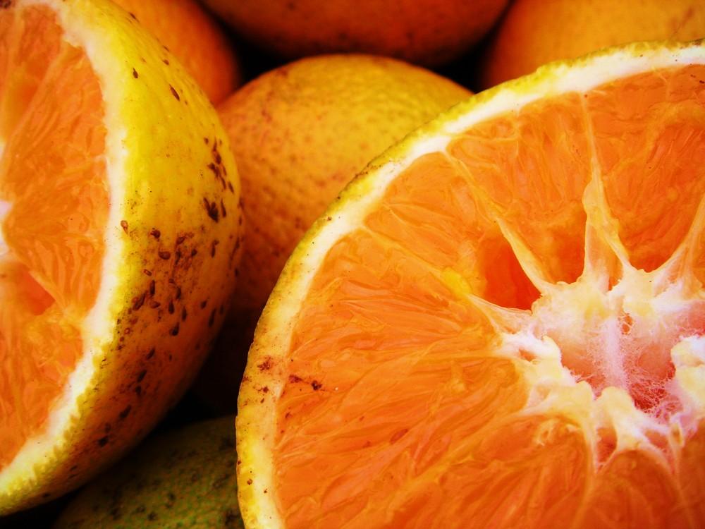 Orangen Stilleben