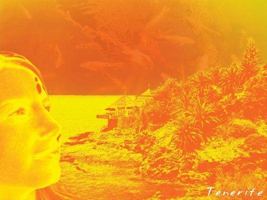 Oranges Teneriffa