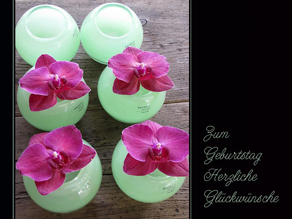 Orchideen-Glückwünsche