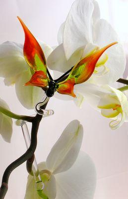 Orchideenstab mit Schmetterling