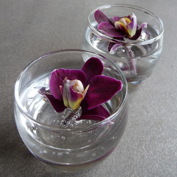 Orchidées flottantes