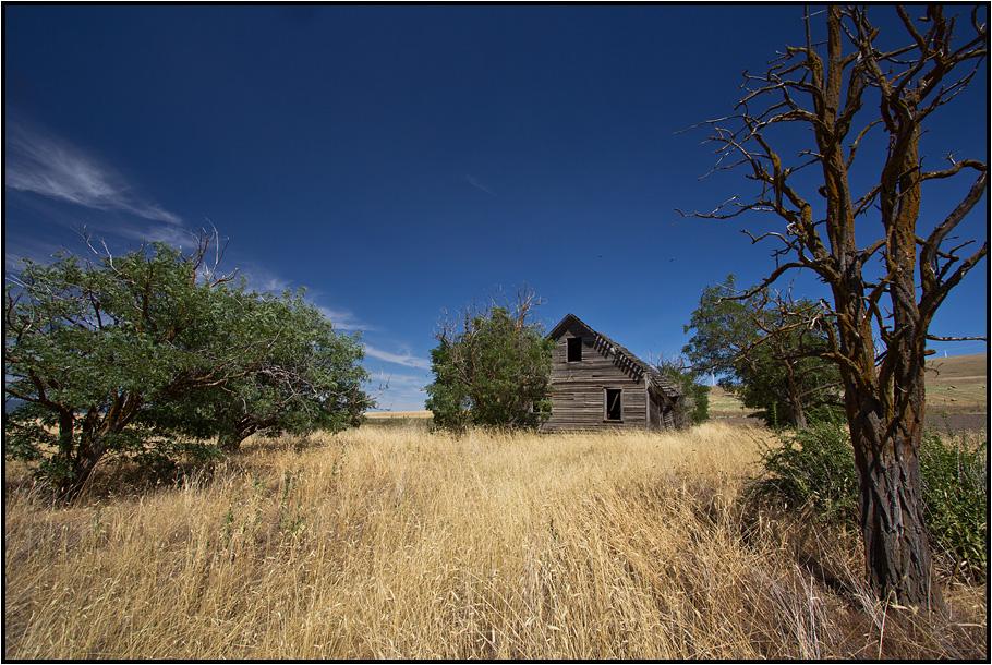 Oregon | lost dreams |
