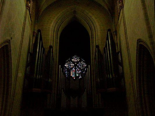 Orgel iim Ulmer Münster