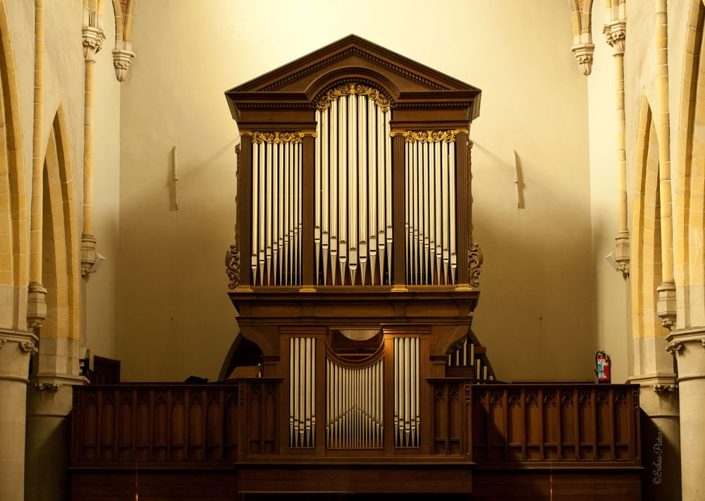 Orgel in Lommel