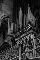 Orgel in St.Stephan