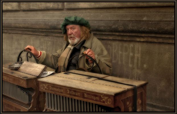 Orgelspieler in Dresden