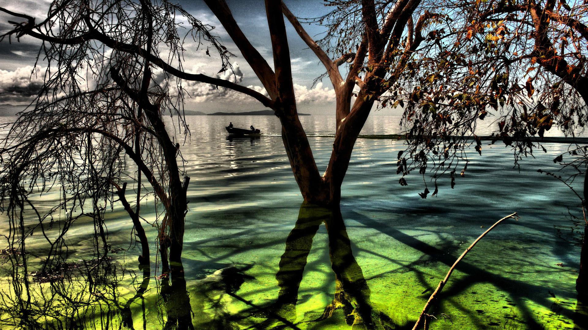 Orilla del Lago de Valencia