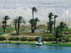 Orillas del Nilo. 4