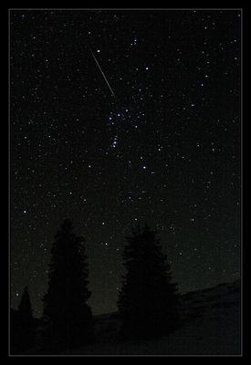 Orion, Bäume und eine Sternschnuppe (und ein Komet)