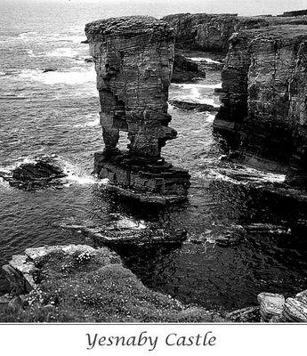 Orkney Cliffs (2)
