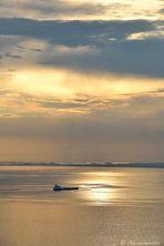 Oro sul golfo di Trieste