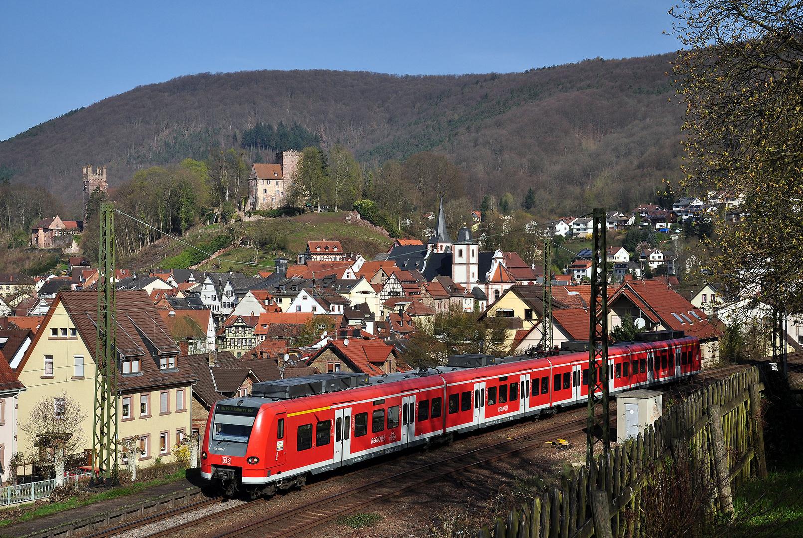 Ortsblick Neckarsteinach