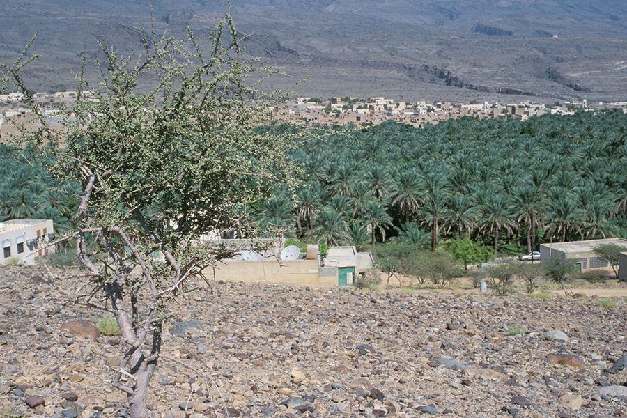 Ortschaft im Oman