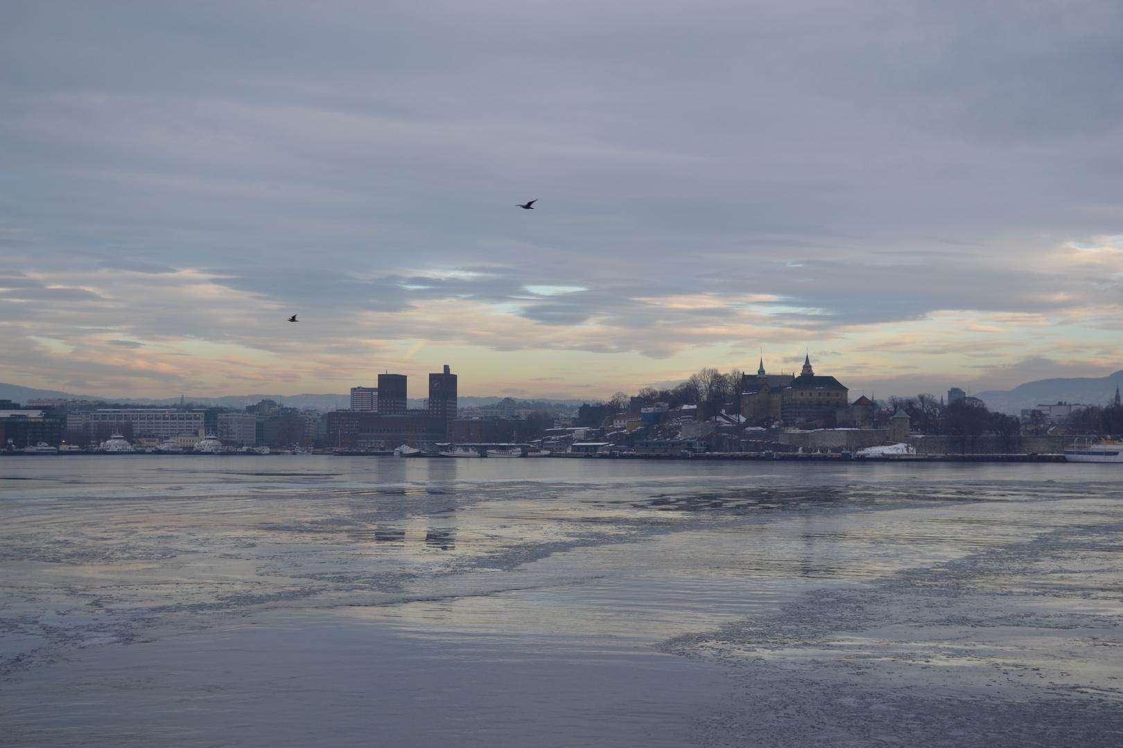 Oslo Januar 2011