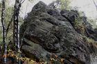 Osning-Sandstein im Teutoburger Wald