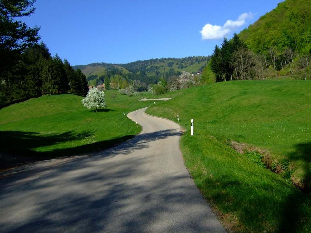 Ostblick Richtung Käsacker & Lippisbacher Höfe Südbaden Markgräflerland