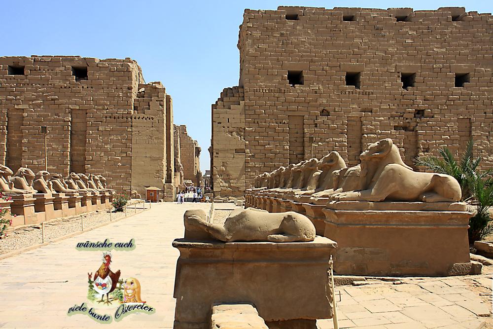 Ostergrüße aus dem sonnigem Luxor