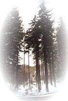Ostern 2001 im Mittelgebirge