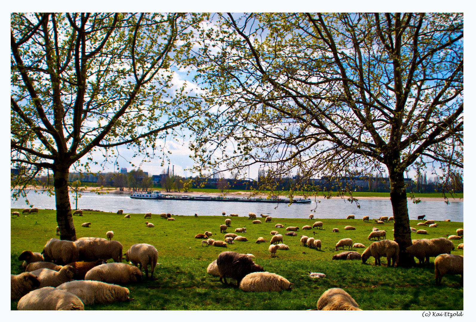 Ostern am Rhein