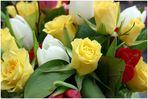 Ostern Farben.....