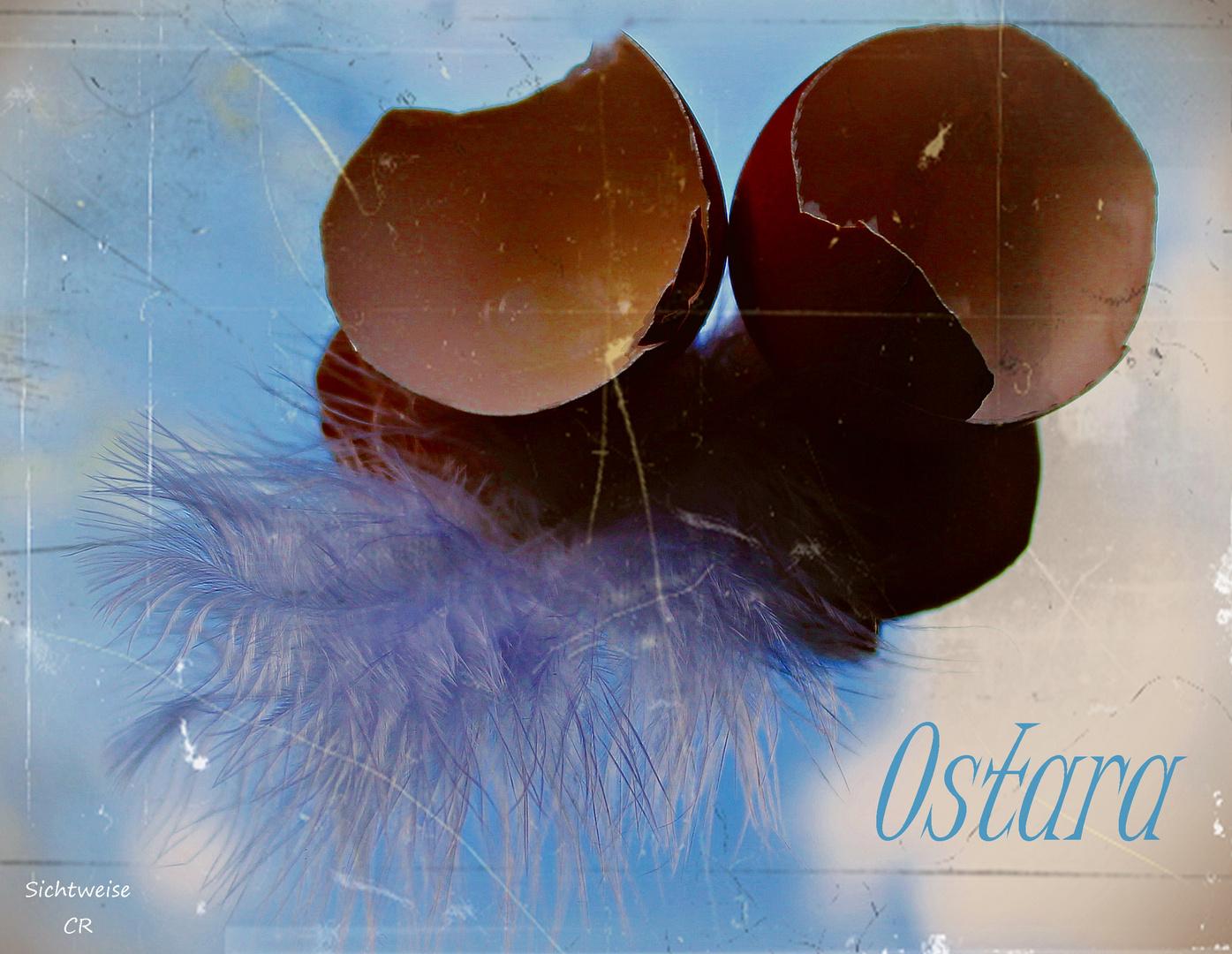 Ostern ist die Zeit des Gleichgewichts zwischen Licht und Dunkelheit ...
