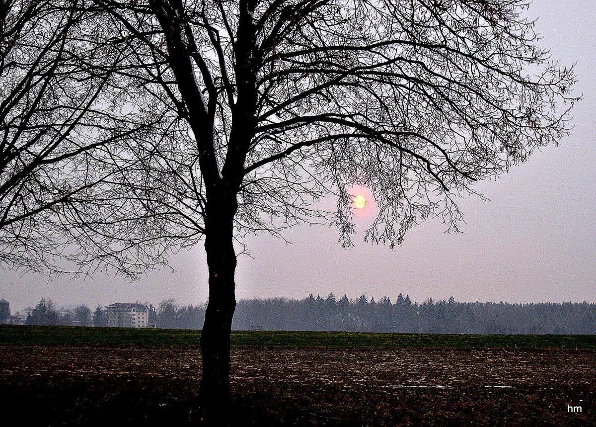 Ostersonntag Abend - die Sonne schaut vorbei!