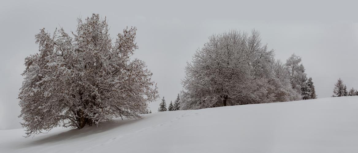 Ostersonntag im tiefsten Winter!