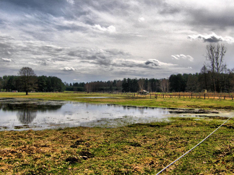 Osterspaziergang im Wildpark SCHORFHEIDE
