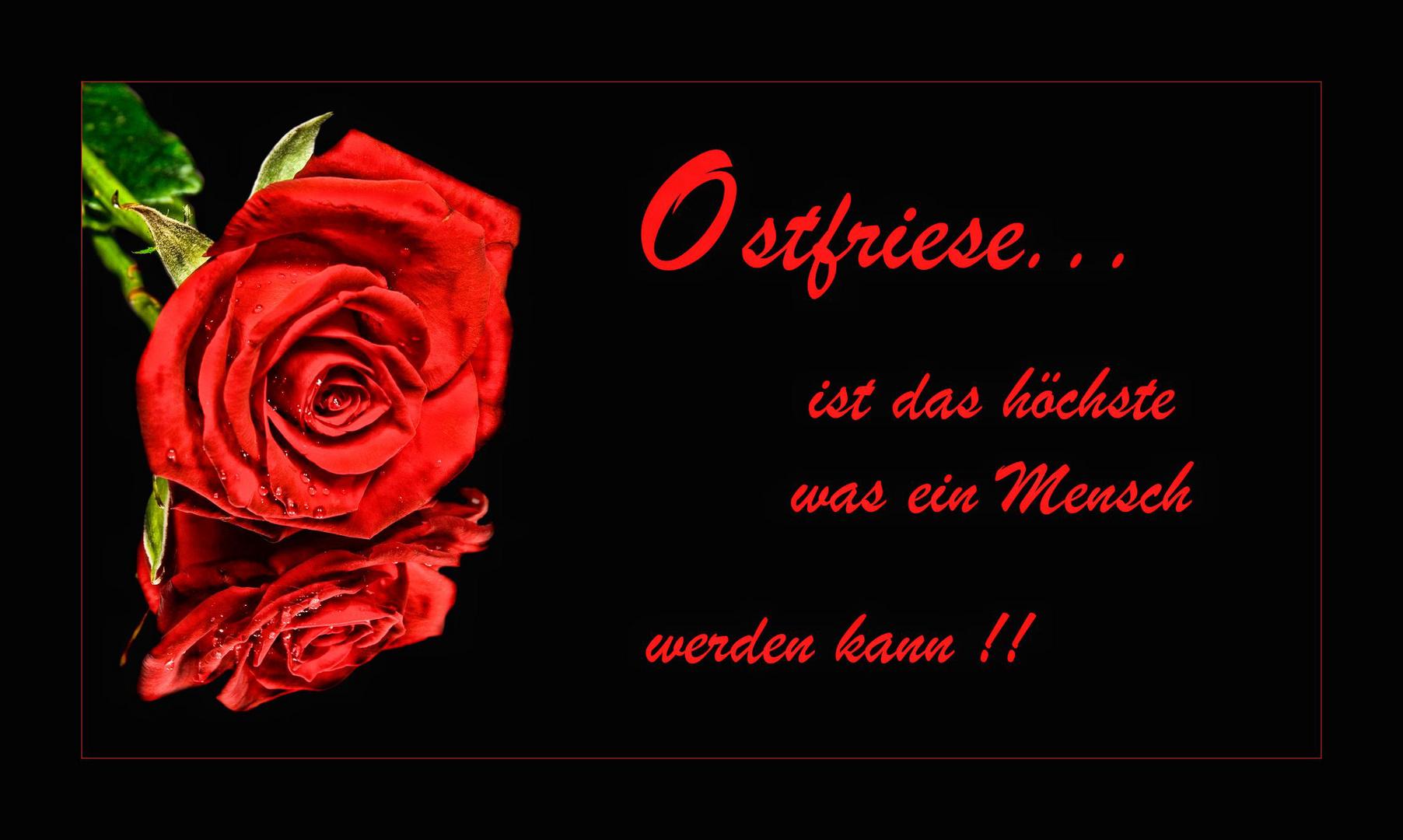 Ostfriese.....