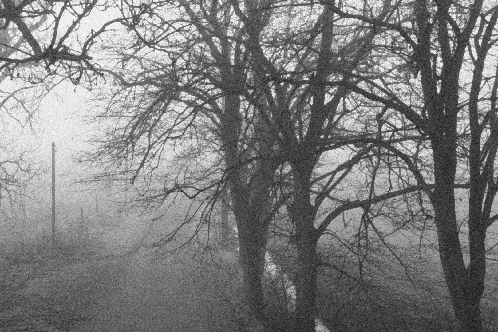 Ostfriesischer Winter II