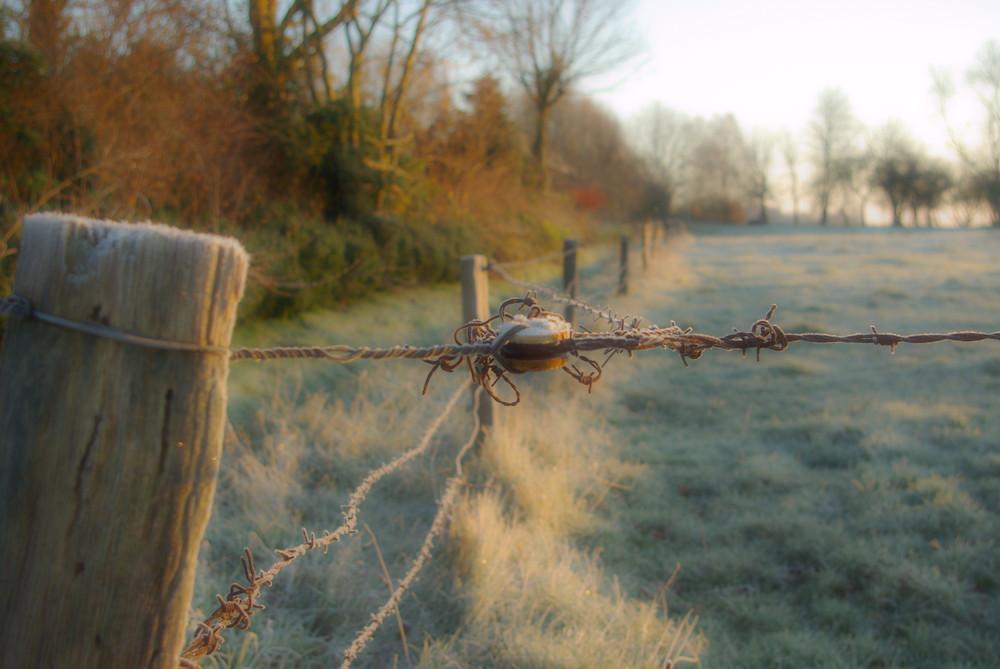 ostfriesischer Wintermorgen