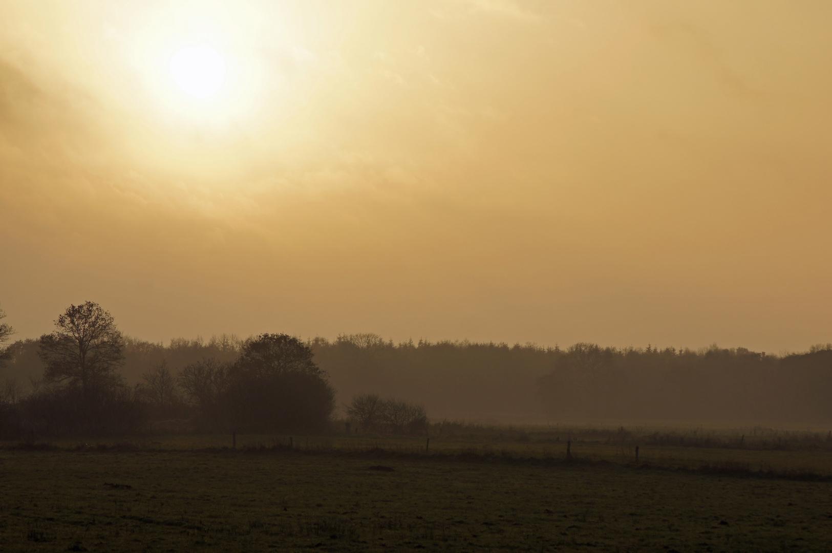 Ostfriesland im Herbst 2011 Teil 4