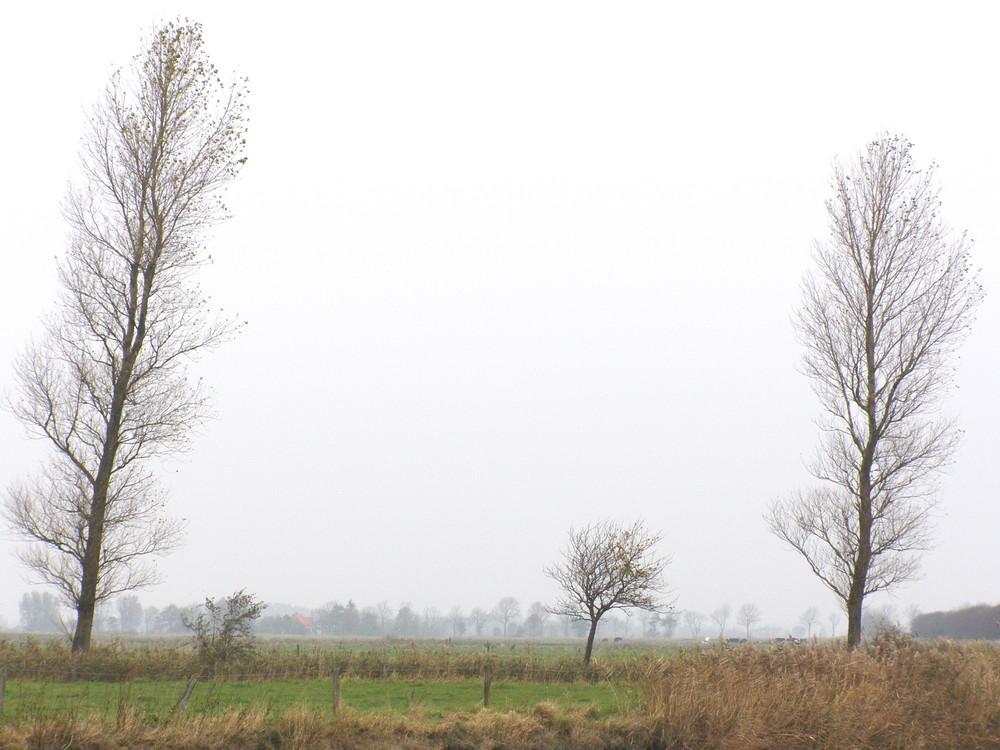 Ostfriesland im Herbst