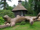 Ostfriesland - im Park des Grafen Knyphausen