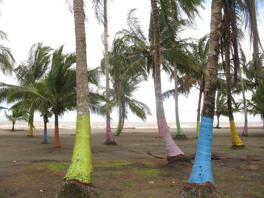 Ostküste Costa Rica