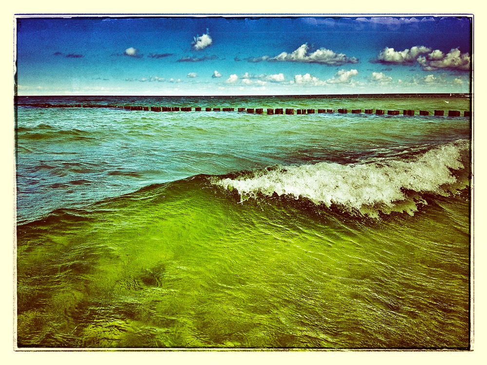 Ostsee bei Zingst /3.