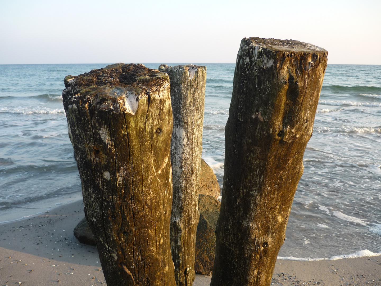 Ostsee Holzstäbe