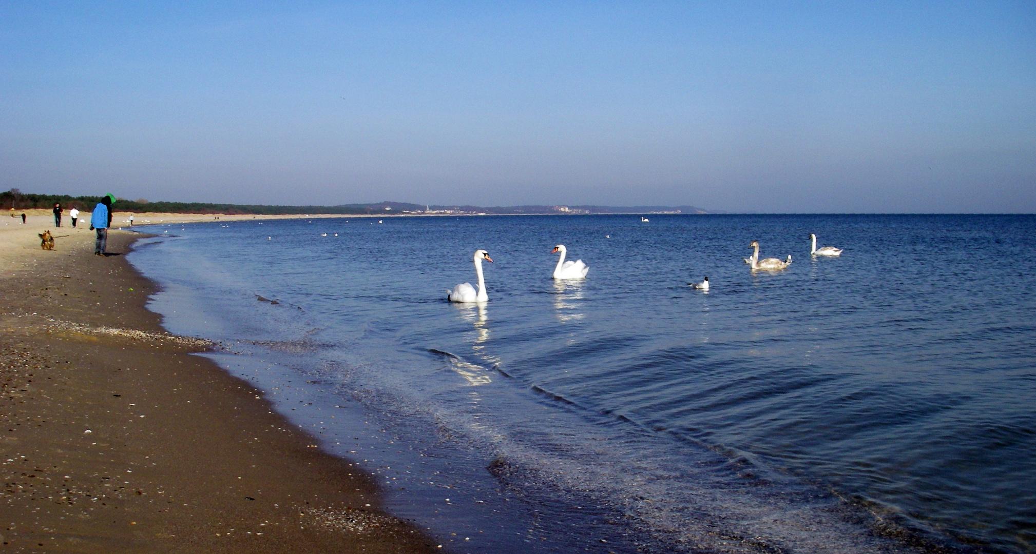 Ostsee im April 2010