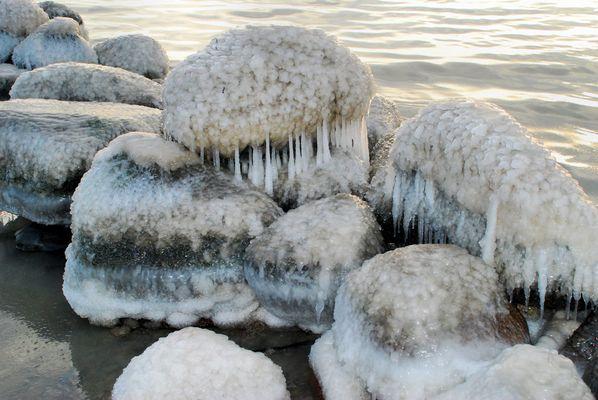 Ostsee-Impressionen (2)
