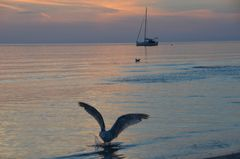 Ostsee Sunset Hiddensee
