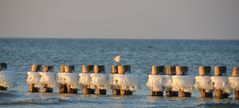 Ostseefeeling auf der Insel