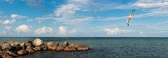Ostseeküste bei Schönhagen