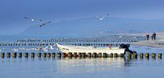 Ostseeküste Insel Hiddensee