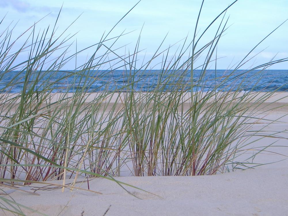 Ostseestrand Ahlbeck