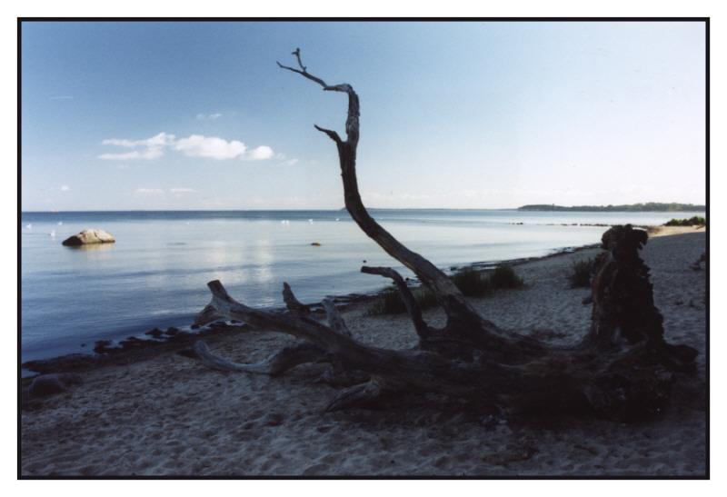 Ostseestrand auf der Insel Rügen