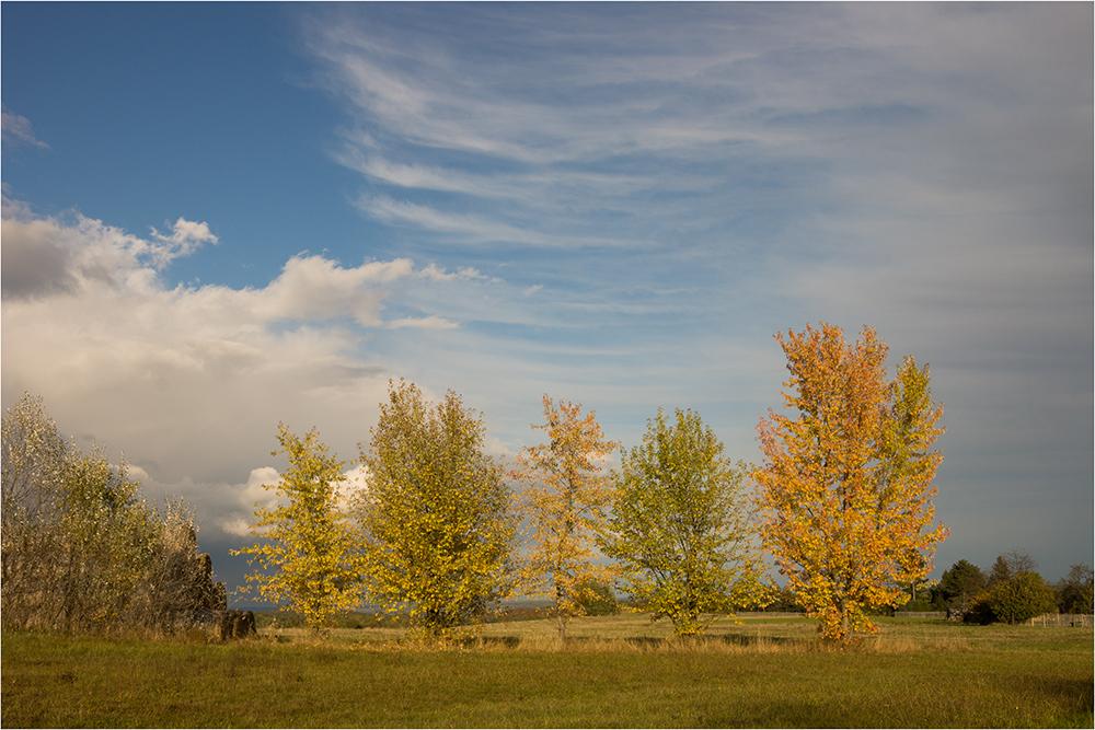 Ostthüringer Herbst
