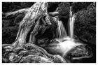 O´Sullivans Cascades, Kerry