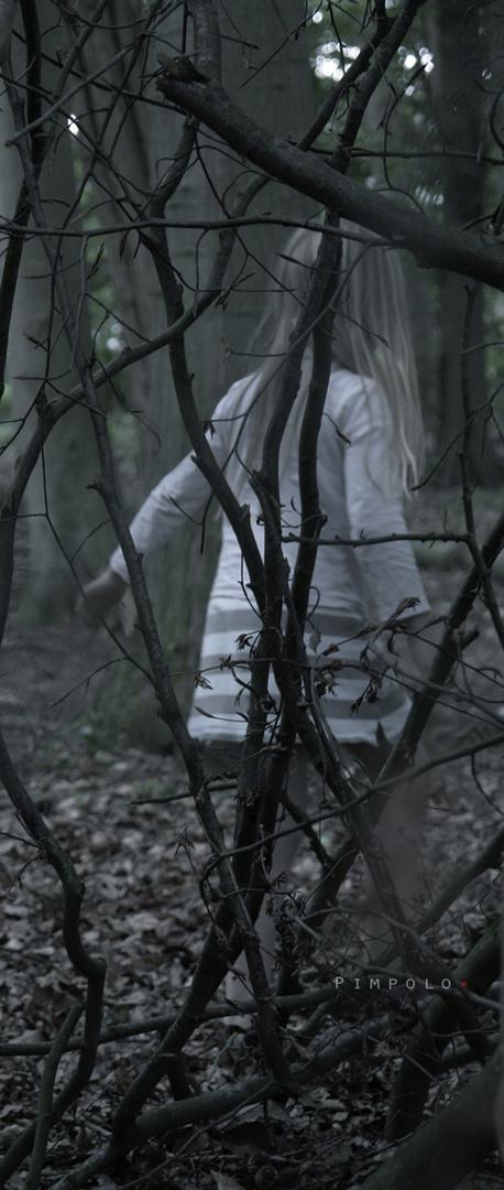 O.T. im Wald